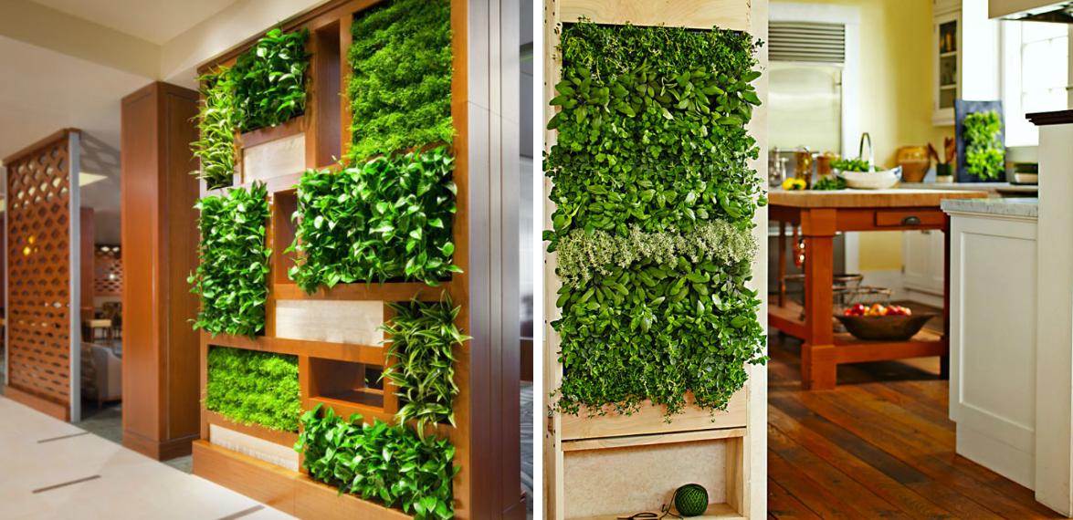 zeleni-zid-green-centar-nis
