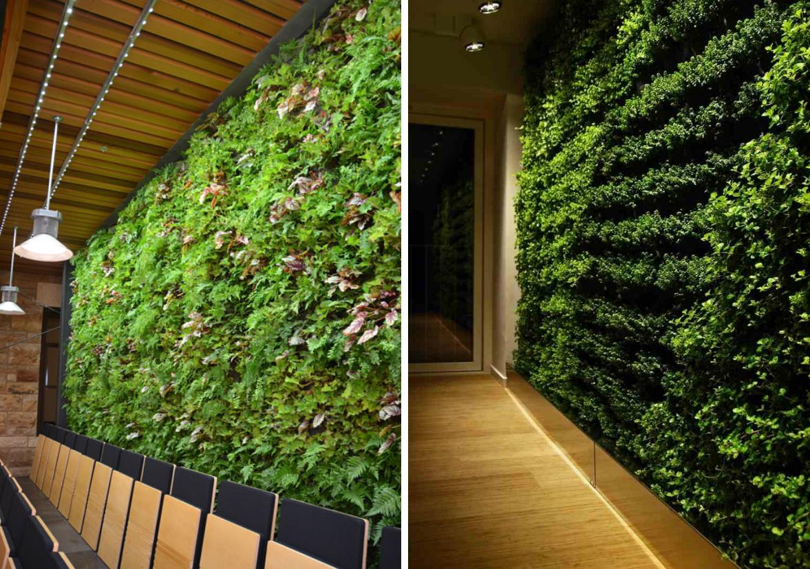 zeleni-zid-paneli-green-centar-9