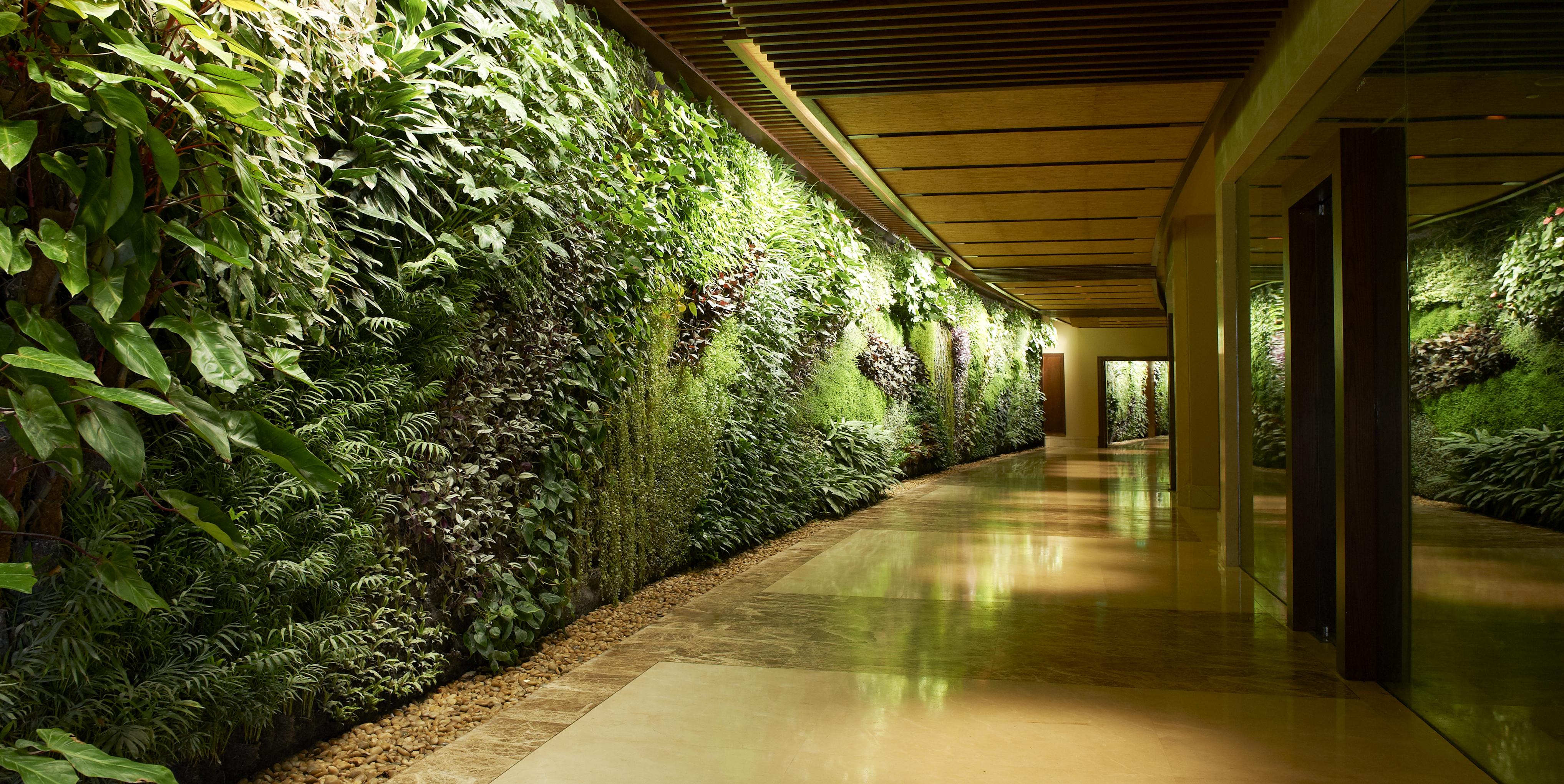 zeleni-zid-vertikalni-vrt-green-centar