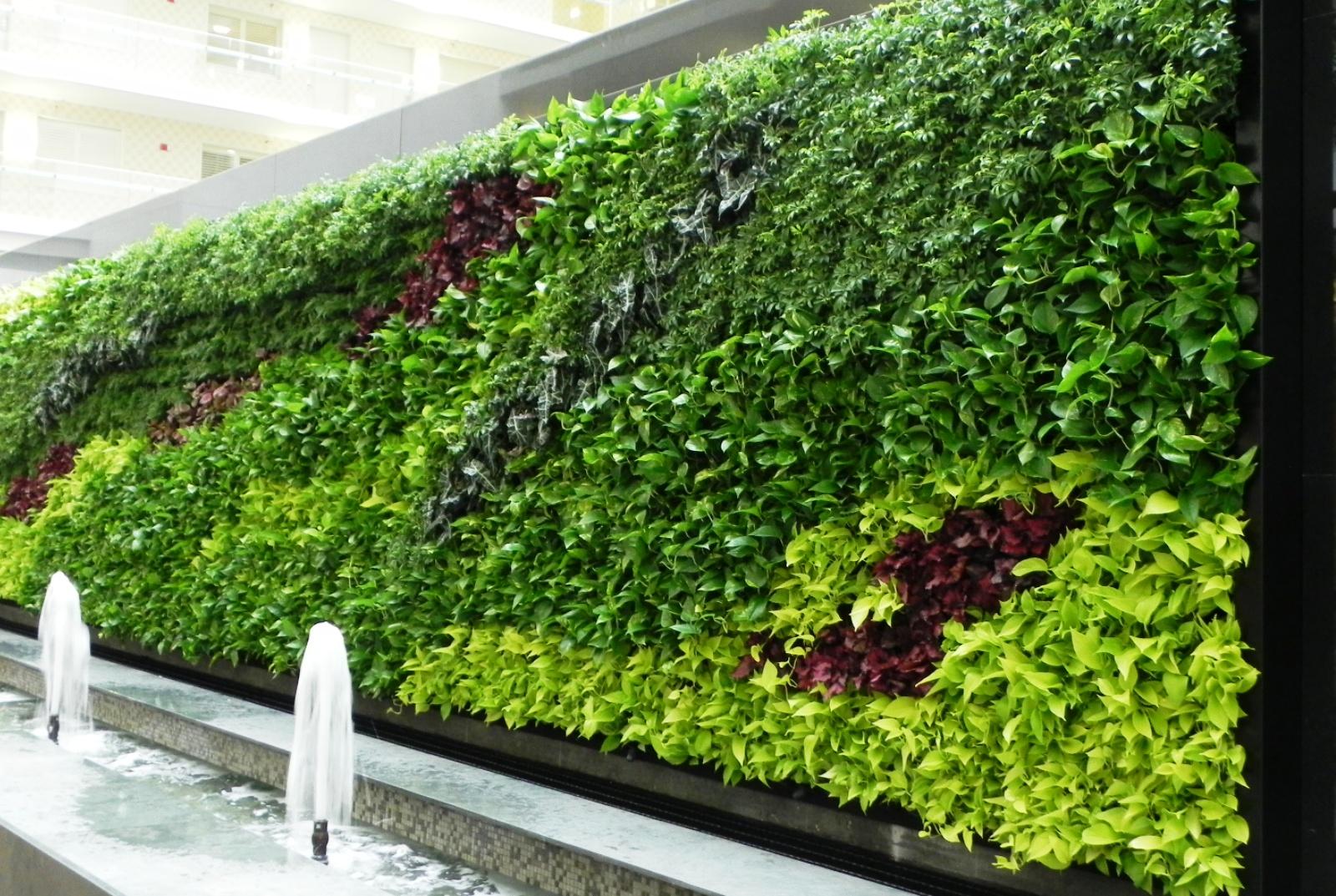 zeleni-zid-vertikalni-vrt-zelena-fasada-green-centar