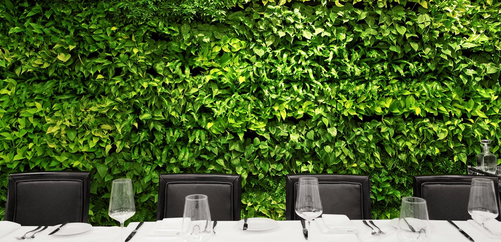 zeleni-zid-vertikalni-vrt-zelena-fasada
