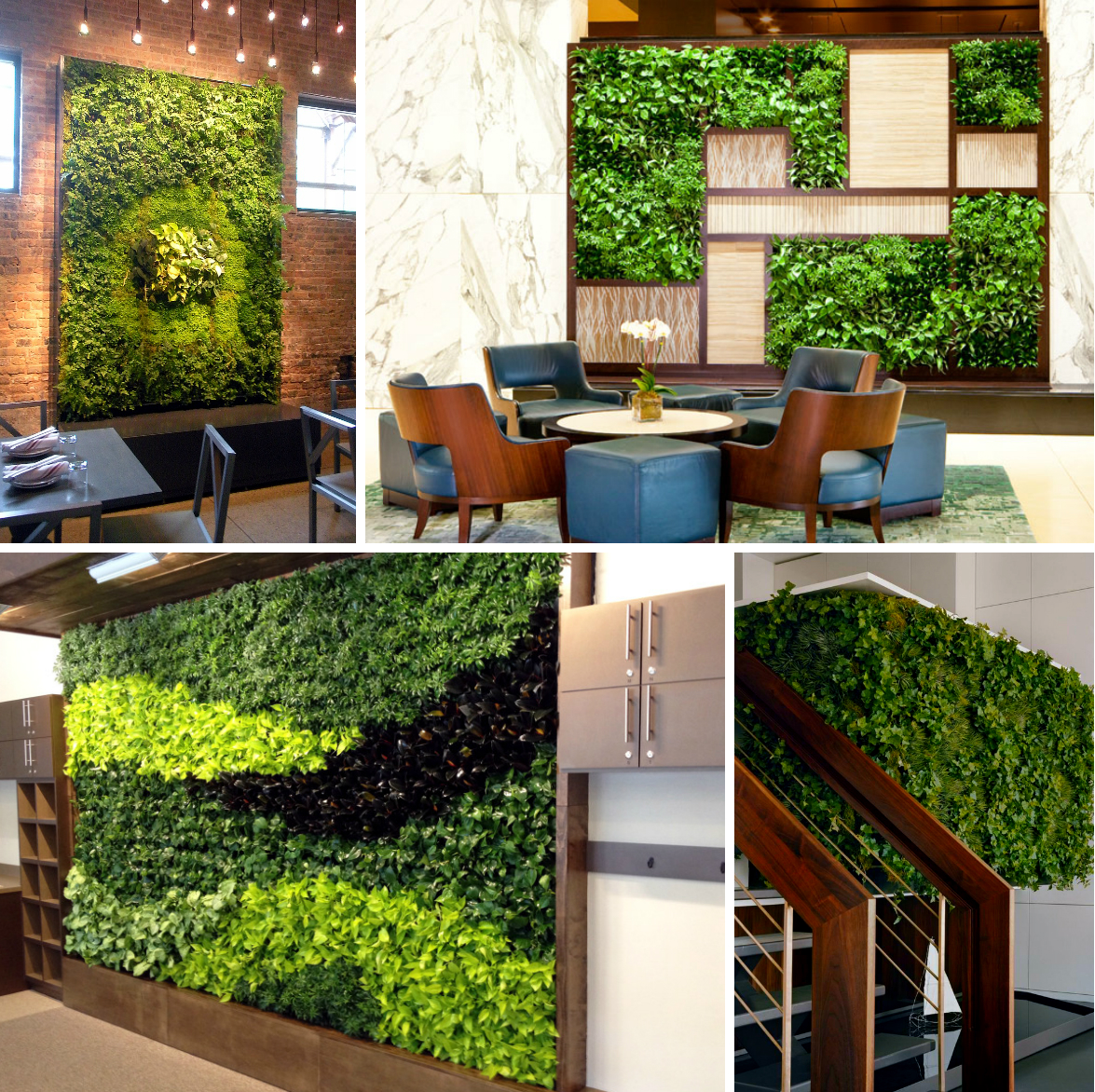 zelenii-zid-green-centar-nis